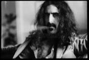 Frank Zappa 1 Watermark